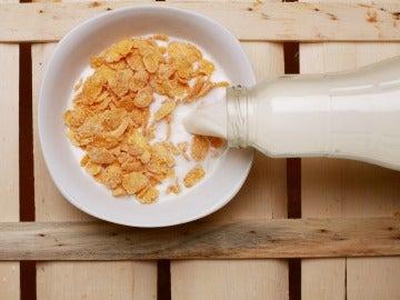 Cereales con leche
