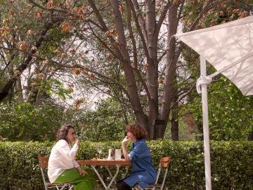 El café del Real Jardín Botánico, un remanso de paz.