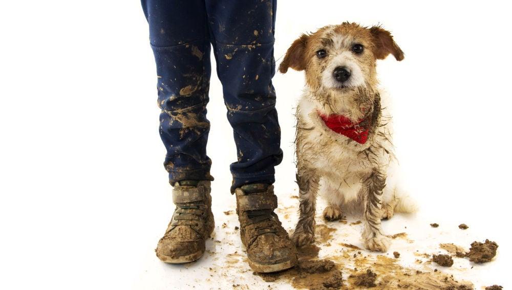 Niño y perro sucios