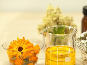 Plantas medicinales para bajar el colesterol rápido y de forma natural