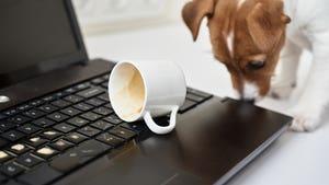 Café en el ordenador