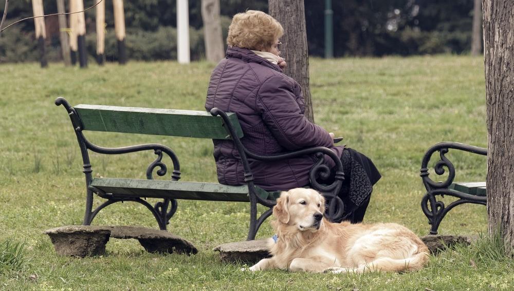 señora y perro