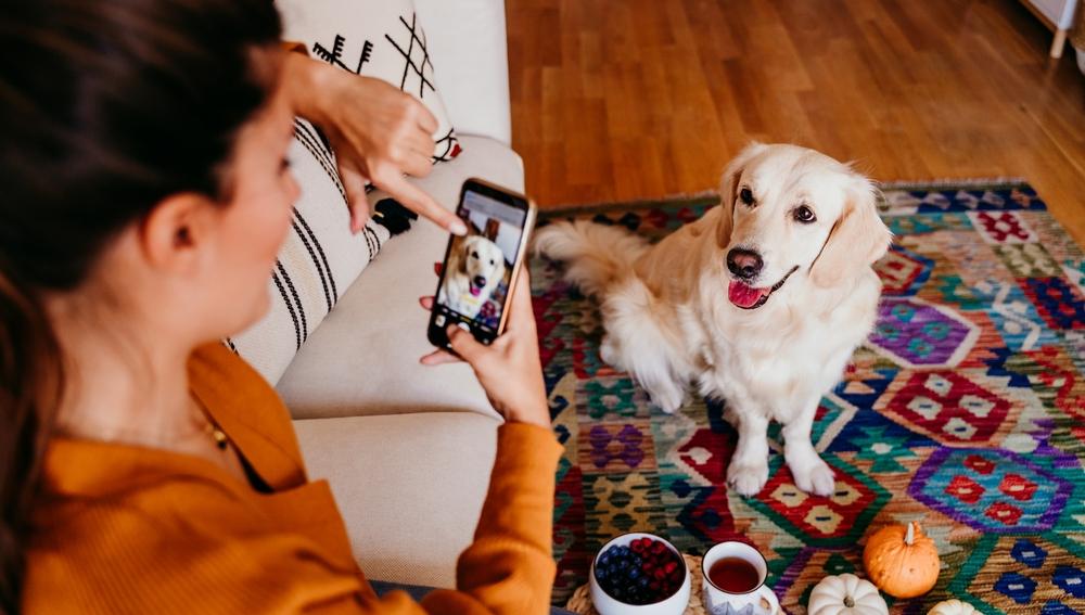 Fotografiar a tu mascota